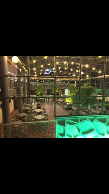 Ellis Island Casino - night green